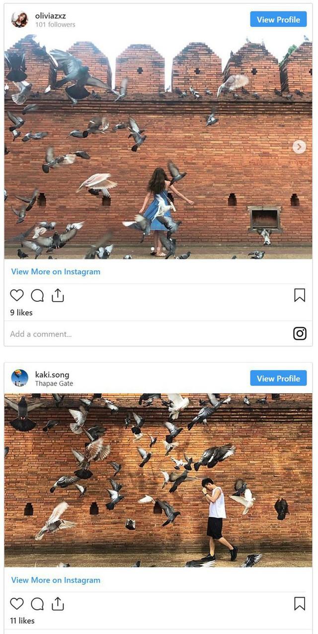 Nghề quái đản nhưng ra tiền ở Thái Lan: Dọa chim bay để du khách chụp hình - Ảnh 4.