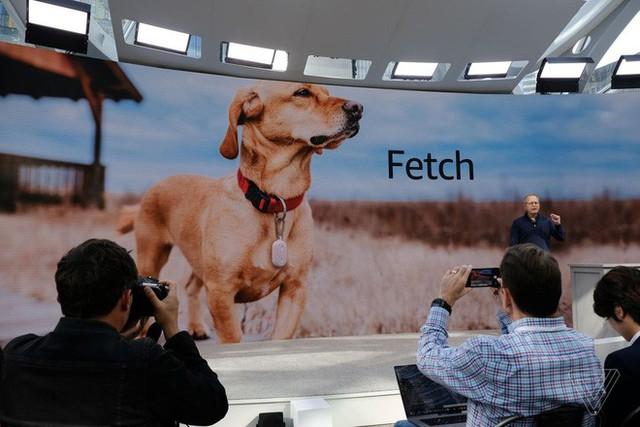 amazon, apple - photo 3 15699803261211947599170 - Tư tưởng lớn gặp nhau, cả Amazon và Apple đều đang phát triển công nghệ giúp bạn biết vị trí của bất kỳ thứ gì