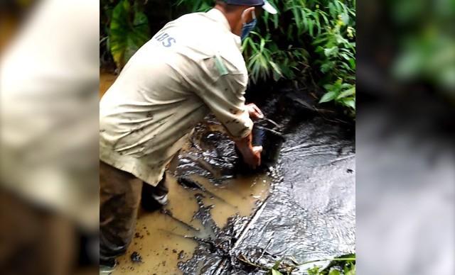 Toàn cảnh vụ đổ trộm dầu thải khiến người dân lao đao khát nước sạch - Ảnh 1.