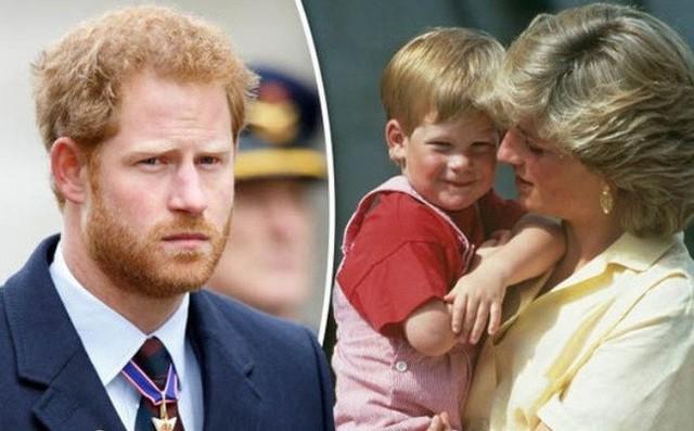 Hoàng tử Harry chính thức thừa nhận mâu thuẫn với anh trai, muốn rời khỏi nước Anh để đến châu Phi sinh sống - Ảnh 3.