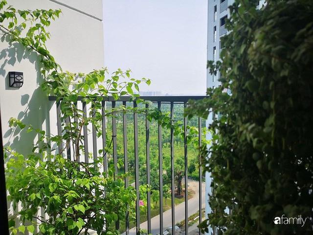 Căn hộ nhỏ thiết kế theo phong cách Nhật của cặp vợ chồng trẻ yêu thích cuộc sống an yên ở Hà Nội - Ảnh 22.