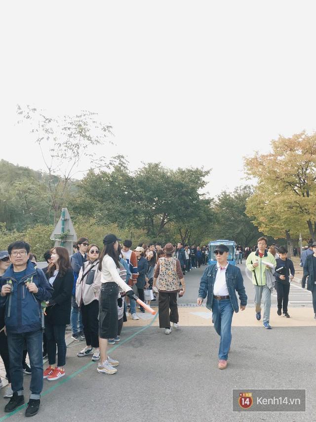 Dân tình check in rần rần đồi cỏ hồng Hàn Quốc, đến khi xem sự thật mới ngỡ ngàng vì đông đến phũ phàng - Ảnh 18.