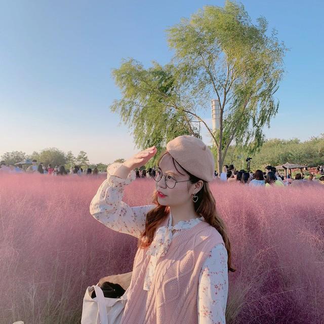 Dân tình check in rần rần đồi cỏ hồng Hàn Quốc, đến khi xem sự thật mới ngỡ ngàng vì đông đến phũ phàng - Ảnh 19.