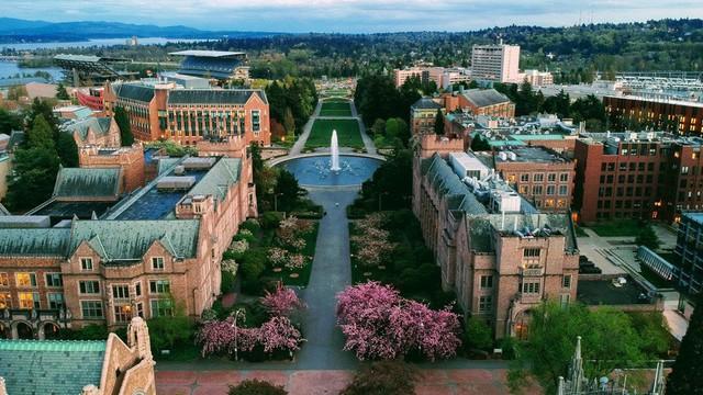 Xếp hạng 10 đại học tốt nhất thế giới, Harvard vẫn số 1 - Ảnh 1.