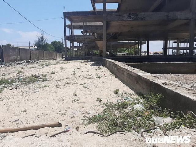 Huế: Cận cảnh resort 600 tỷ đồng bị bỏ hoang trên đất vàng ven biển - Ảnh 1.