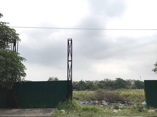 Nhà máy 14 triệu USD của công ty mẹ Món Huế: Bỏ hoang ngay sau ngày khởi công, trở thành bãi rác công cộng - Ảnh 3.