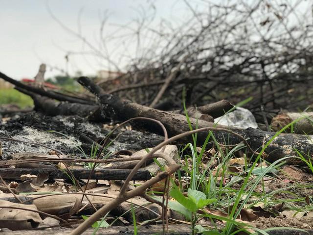 Nhà máy 14 triệu USD của công ty mẹ Món Huế: Bỏ hoang ngay sau ngày khởi công, trở thành bãi rác công cộng - Ảnh 8.