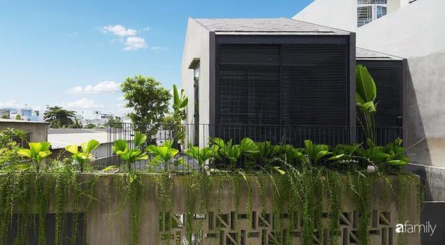 Ngôi nhà phố ngập tràn cây xanh và ánh nắng dù kín cổng cao tường ở Sài Gòn của cặp vợ chồng thành đạt quê gốc miền Trung - Ảnh 2.