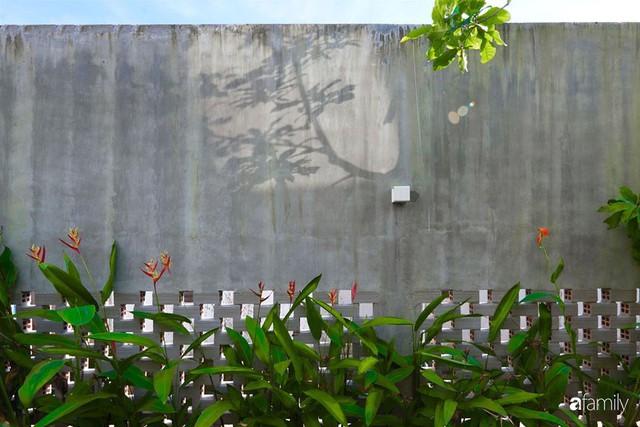 Ngôi nhà phố ngập tràn cây xanh và ánh nắng dù kín cổng cao tường ở Sài Gòn của cặp vợ chồng thành đạt quê gốc miền Trung - Ảnh 13.