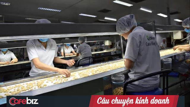 Công ty Singapore đến Việt Nam trồng tiêu, điều và ớt để xuất thẳng sang Trung Quốc: Nông dân Việt khéo léo, hiểu biết, năng suất gấp 7 lần Ấn Độ, Indonesia - Ảnh 2.