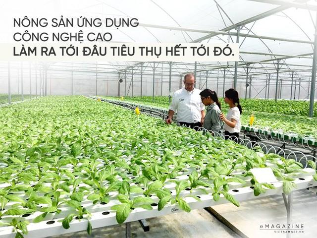 Trồng rau không cần đất, anh nông dân đếm tiền 9 tỷ/ha - Ảnh 5.