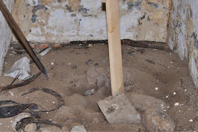 Bốn triệu con kiến bị mắc kẹt dưới hầm hạt nhân thời Liên Xô, chúng đã làm thế nào để sống? - Ảnh 5.