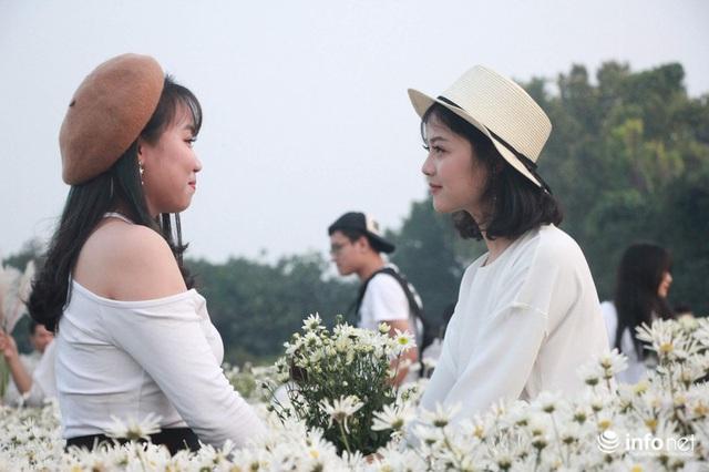 Tắc đường vào vườn hoa Nhật Tân dịp cuối tuần khi dân đổ xô đi chụp cúc họa mi - Ảnh 8.