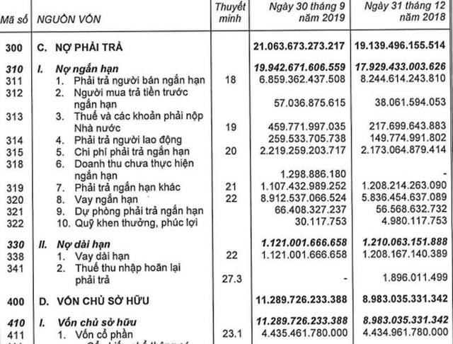 Tham vọng số 1, đại gia Nguyễn Đức Tài ôm khối nợ gần 1 tỷ USD - Ảnh 1.