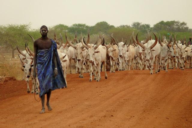 """Chuyện lấy chồng... ma ở Nam Sudan: Tưởng kinh dị mà ai cũng xem là bình thường, con cái sau này cũng được tính là của """"bố ma"""" - Ảnh 3."""