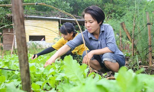 Câu chuyện của hai cô gái 9x về Hà Tĩnh mở trang trại rau quả sạch và giấc mơ sống gần hơn với thiên nhiên - Ảnh 2.