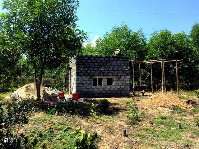Câu chuyện của hai cô gái 9x về Hà Tĩnh mở trang trại rau quả sạch và giấc mơ sống gần hơn với thiên nhiên  - Ảnh 16.