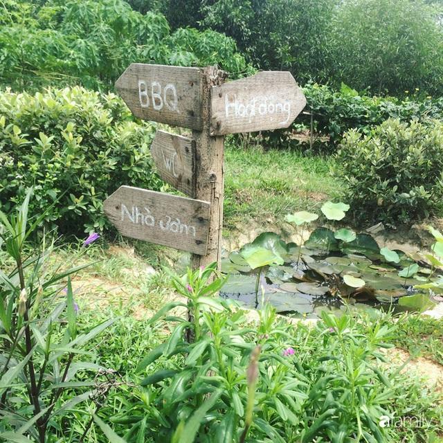 Câu chuyện của hai cô gái 9x về Hà Tĩnh mở trang trại rau quả sạch và giấc mơ sống gần hơn với thiên nhiên - Ảnh 18.