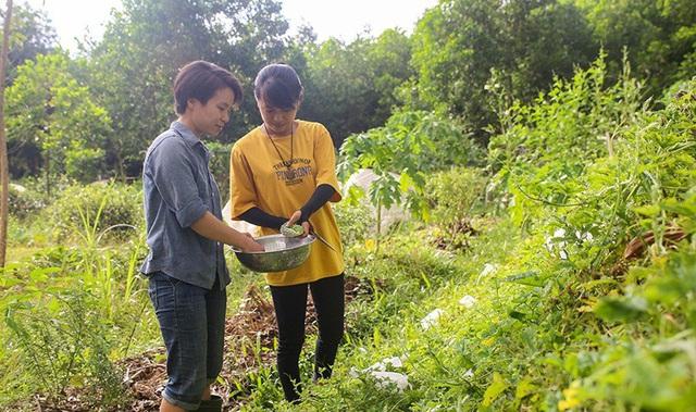 Câu chuyện của hai cô gái 9x về Hà Tĩnh mở trang trại rau quả sạch và giấc mơ sống gần hơn với thiên nhiên - Ảnh 3.