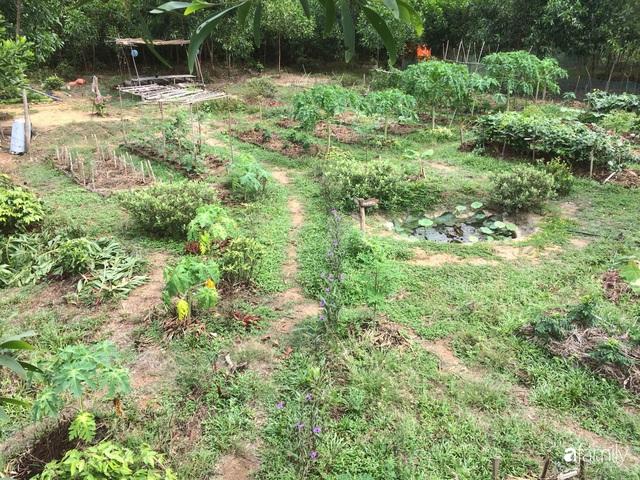 Câu chuyện của hai cô gái 9x về Hà Tĩnh mở trang trại rau quả sạch và giấc mơ sống gần hơn với thiên nhiên - Ảnh 27.