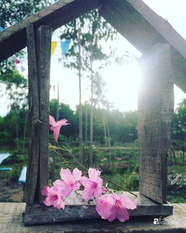Câu chuyện của hai cô gái 9x về Hà Tĩnh mở trang trại rau quả sạch và giấc mơ sống gần hơn với thiên nhiên - Ảnh 29.