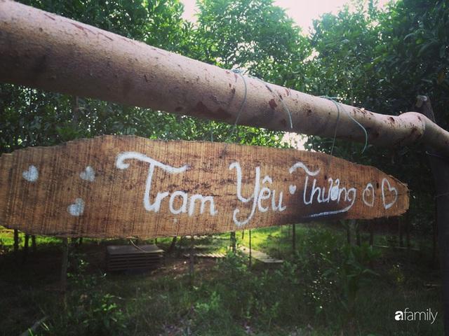 Câu chuyện của hai cô gái 9x về Hà Tĩnh mở trang trại rau quả sạch và giấc mơ sống gần hơn với thiên nhiên - Ảnh 30.