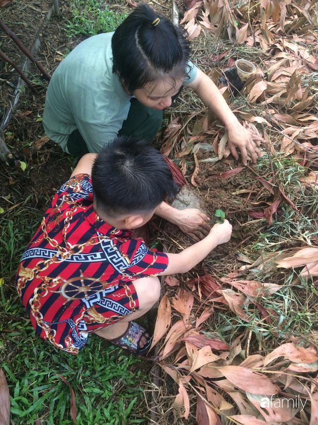 Câu chuyện của hai cô gái 9x về Hà Tĩnh mở trang trại rau quả sạch và giấc mơ sống gần hơn với thiên nhiên - Ảnh 31.