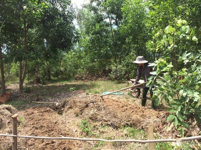 Câu chuyện của hai cô gái 9x về Hà Tĩnh mở trang trại rau quả sạch và giấc mơ sống gần hơn với thiên nhiên  - Ảnh 35.