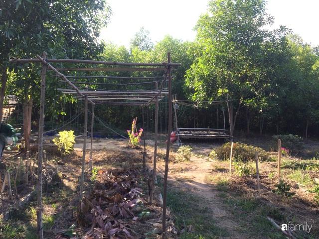 Câu chuyện của hai cô gái 9x về Hà Tĩnh mở trang trại rau quả sạch và giấc mơ sống gần hơn với thiên nhiên  - Ảnh 39.