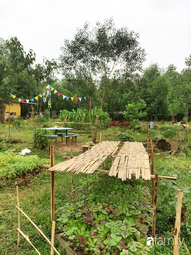 Câu chuyện của hai cô gái 9x về Hà Tĩnh mở trang trại rau quả sạch và giấc mơ sống gần hơn với thiên nhiên  - Ảnh 51.