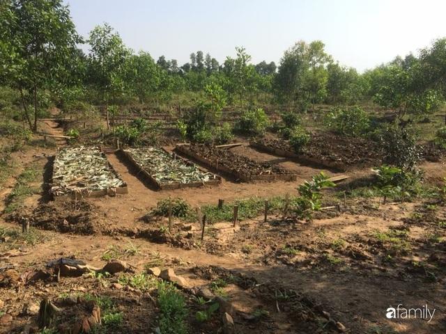 Câu chuyện của hai cô gái 9x về Hà Tĩnh mở trang trại rau quả sạch và giấc mơ sống gần hơn với thiên nhiên - Ảnh 54.