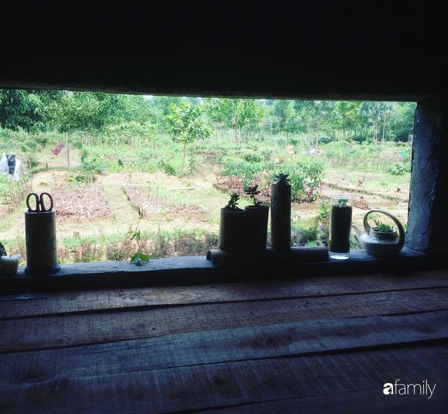 Câu chuyện của hai cô gái 9x về Hà Tĩnh mở trang trại rau quả sạch và giấc mơ sống gần hơn với thiên nhiên - Ảnh 55.
