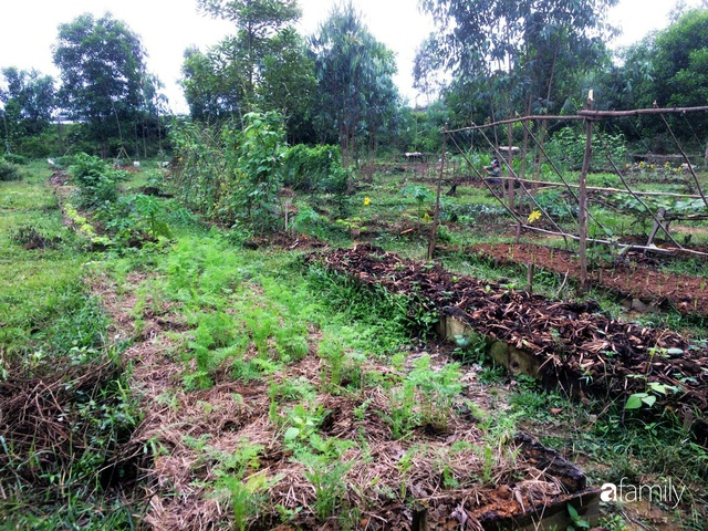 Câu chuyện của hai cô gái 9x về Hà Tĩnh mở trang trại rau quả sạch và giấc mơ sống gần hơn với thiên nhiên - Ảnh 59.
