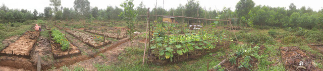 Câu chuyện của hai cô gái 9x về Hà Tĩnh mở trang trại rau quả sạch và giấc mơ sống gần hơn với thiên nhiên  - Ảnh 7.