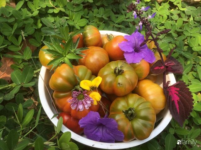 Câu chuyện của hai cô gái 9x về Hà Tĩnh mở trang trại rau quả sạch và giấc mơ sống gần hơn với thiên nhiên - Ảnh 65.