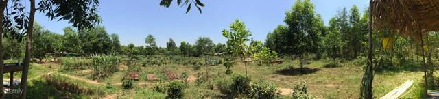 Câu chuyện của hai cô gái 9x về Hà Tĩnh mở trang trại rau quả sạch và giấc mơ sống gần hơn với thiên nhiên  - Ảnh 8.
