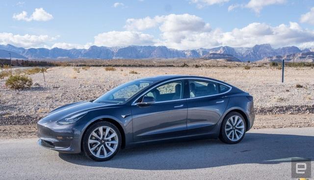 Xe Tesla đang chạy 100 km/h, chế độ tự lái Autopilot vẫn phanh kịp để cứu mạng đại gia đình vịt - Ảnh 3.