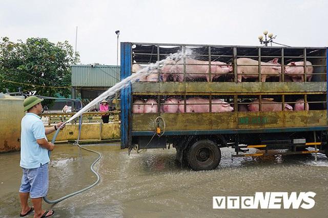 Nguy cơ thiếu 200.000 tấn thịt lợn dịp cuối năm - Ảnh 1.