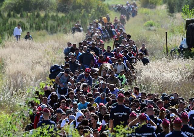 Lý do khiến người nhập cư trái phép bất chấp những rủi ro, vẫn đánh cược tính mạng mình quyết đi đến tận cùng cuộc hành trình tử thần - Ảnh 1.