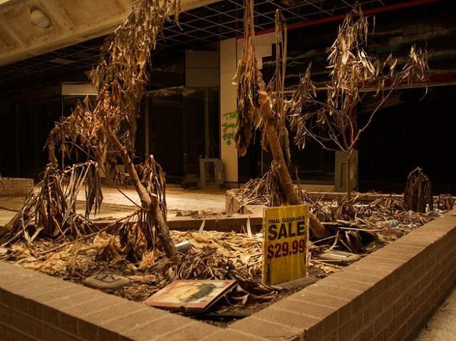 Loạt trung tâm thương mại sang chảnh bị bỏ hoang khắp nước Mỹ - Ảnh 9.