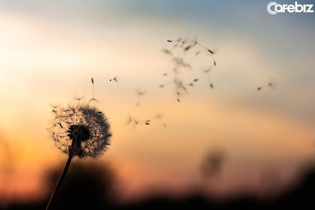 Đời người như hoa, kẻ nhạt là kẻ thơm: 4 chiếc chìa khóa mở ra cánh cửa hạnh phúc của bạn nên hiểu thấu - Ảnh 2.