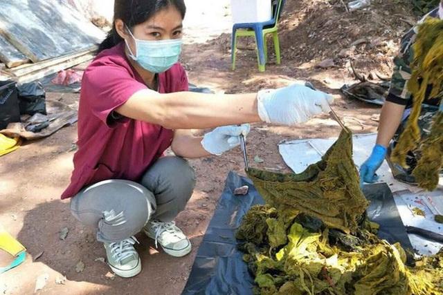 Mổ xác nai 200kg ở Thái Lan nhận được 7kg rác nhựa và cả... quần lót: Đau lòng vì tác động của loài người đã là quá lớn - Ảnh 2.