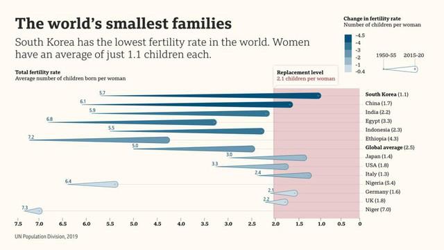 Nghịch lý dân số ở Hàn Quốc - Ảnh 1.
