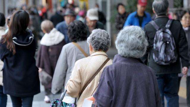 Câu chuyện về những tài xế lão niên của Nhật Bản: 70 tuổi vẫn trên từng cây số, cấm cũng dở mà để yên cũng không xong - Ảnh 2.