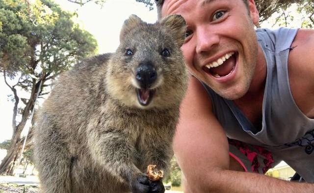 australia - photo 3 1572940688120456461704 - 10 điều thú vị về Australia mà bạn chưa biết