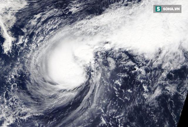 Bão số 6 đạt đỉnh: Trận bão mạnh nhất, diễn biến phức tạp nhất năm 2019 - Ảnh 3.