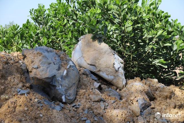 Vụ đổ trộm chất thải nguy hại tại Sóc Sơn: Nuôi vịt vịt chết, dân không dám đến gần - Ảnh 10.