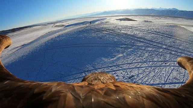 Những chú đại bàng vàng dũng mãnh bên cạnh thợ săn Kazakhstan - Ảnh 2.