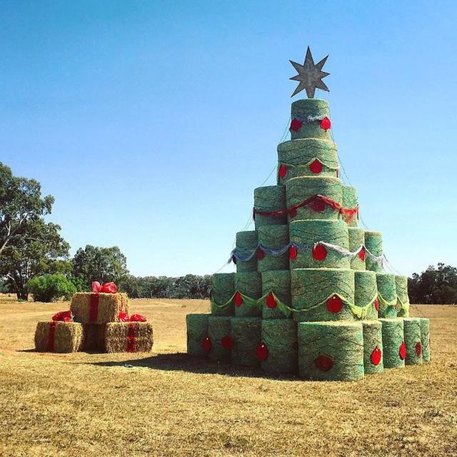 Ngắm 20 cây thông Noel cực chất từ những nhân viên sáng tạo - Ảnh 10.