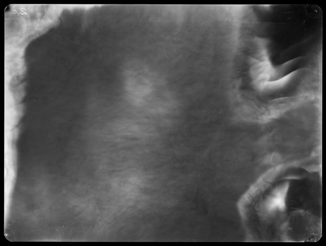 Người nghệ sĩ bắt phóng xạ ở Chernobyl hiện nguyên hình - Ảnh 9.